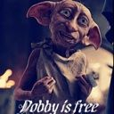 Dobby-Is-A-Free-Elf