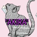 El_Rincon_De_Akira