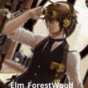 Elm_ForestWood