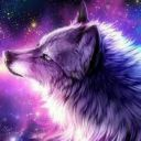 Galactic_Night_Wolf