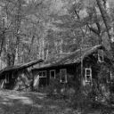 GhostTownInTheWoods