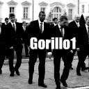 Gorillo1