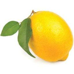 Mate X Reader Lemon