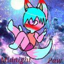 Midnight_Paw