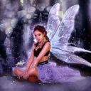 Midnight_Stars_