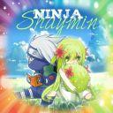 NinjaShaymin