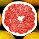 OrangeEtBlueMorality