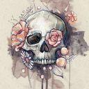 RosesRed