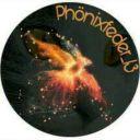 Phoenixfeder_13