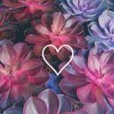 Quindearia_love2