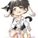 mèo Mun didi