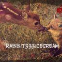 Rabbit333icecream