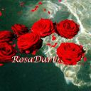 Rosa Dart
