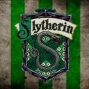 Slytherin Lover ❤️