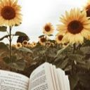 SunflowerPages