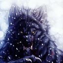 Lycan Of The North