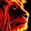 Tiger_Scar