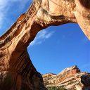 Fred et George Weasley Drago Malefoy