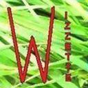 WizzetteFF