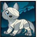 Wolf55309