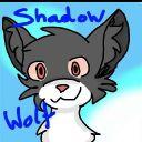 YTShadowWolf