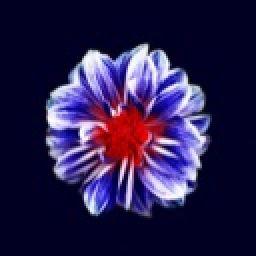 _purplepen_