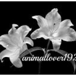 animallover192