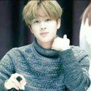 Jin's fan