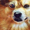 ~Bell Lovington~