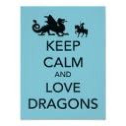 dragongeek1
