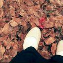 fida_Safitri