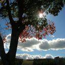 Clouds~