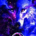 harleywolf12