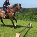 horsy90967