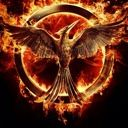hunger_games_is_life
