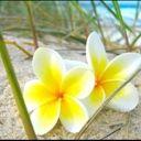 lindafitz