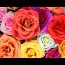 love_life64