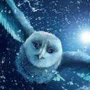 owlpost92