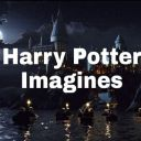 potterimagine