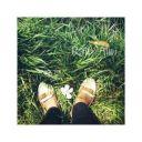 raib_alwi