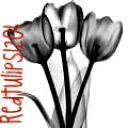redtulips1201