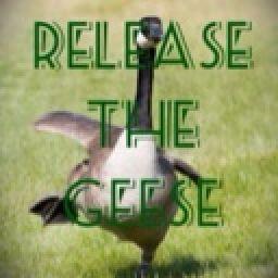https://a.wattpad.com/useravatar/releasethegeese.256.804588.jpg