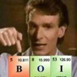 Memes And Shit B I C T H Wattpad