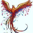 shine_phoenix