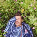 Harry's Cupcake