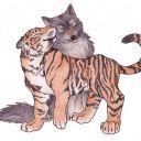 tiger101