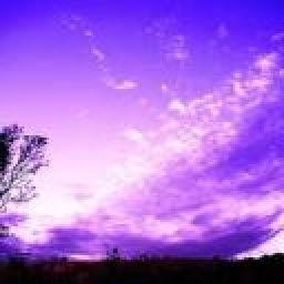 violet_skies