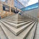 wildflowergarden