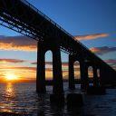 wolfiesstories