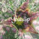 Youtulip